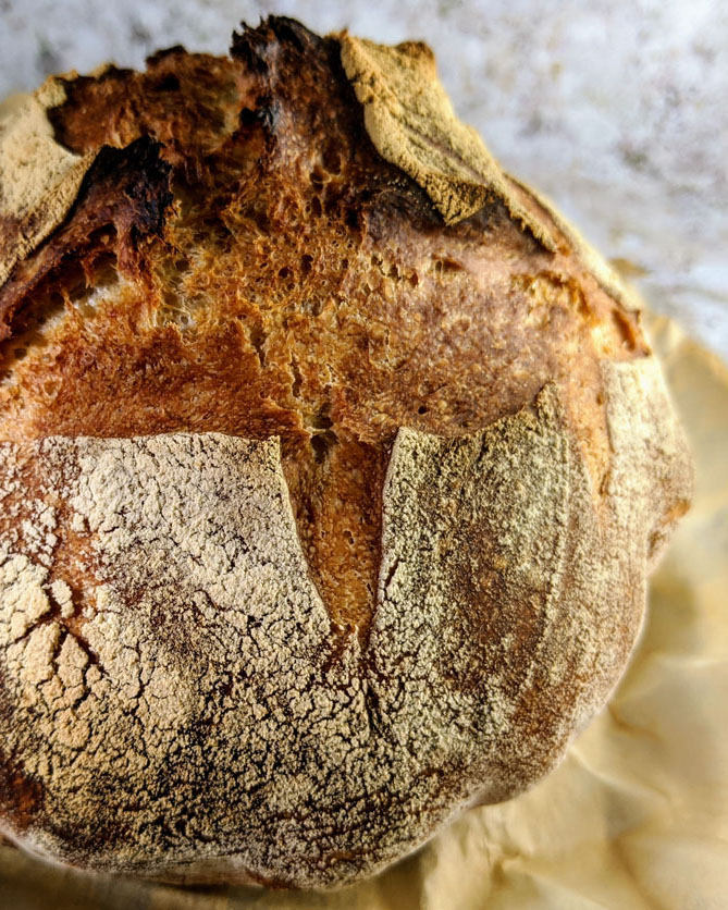 Easy no knead Sourdough bread