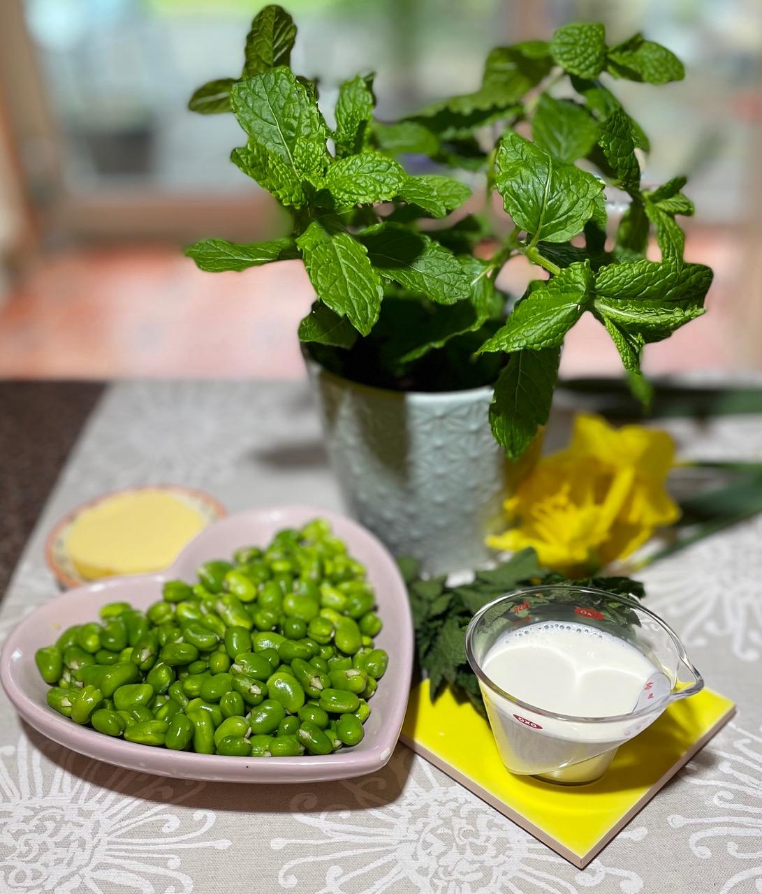 broad-bean-puree-ingredients